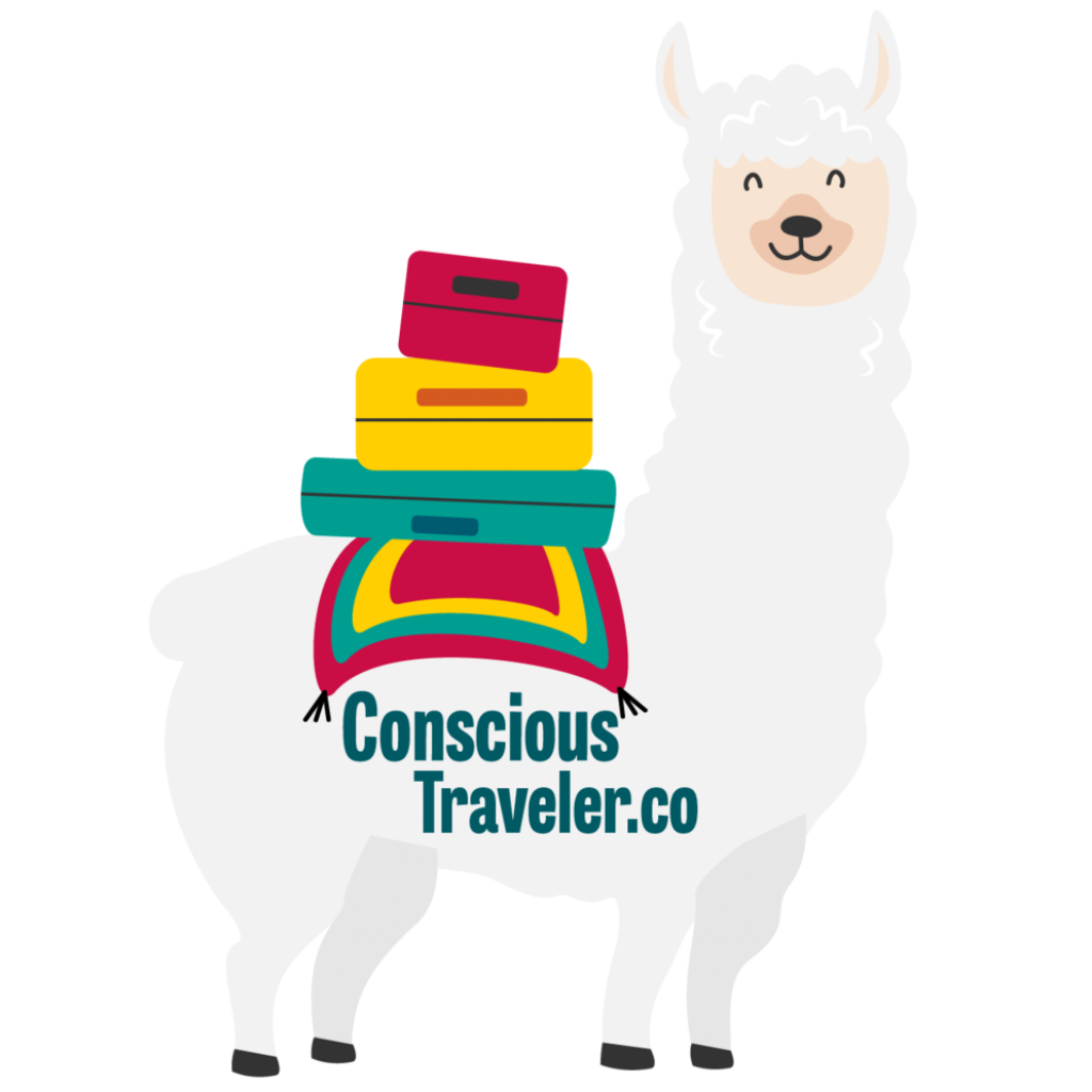 Concious Traveler.co_.png